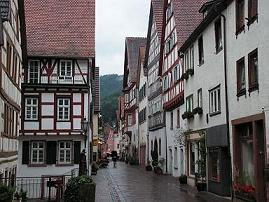 For example Hirschhorn, Germany (Source: journey-to-germany.com)